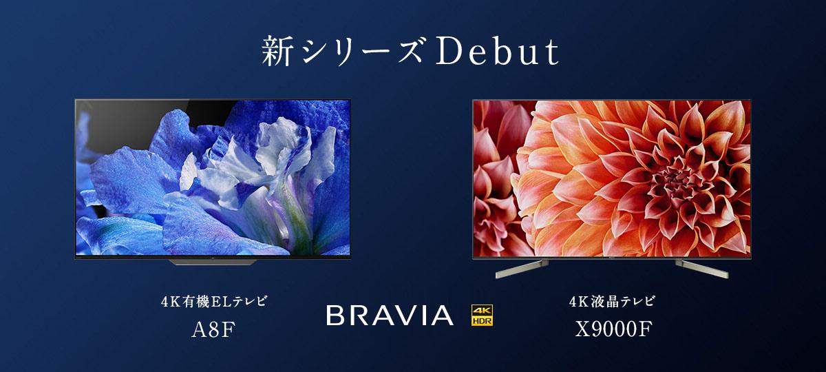 bravia_180508